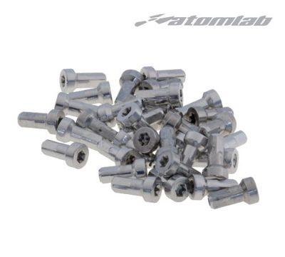 Atomlab - Torque 6mm Nippel